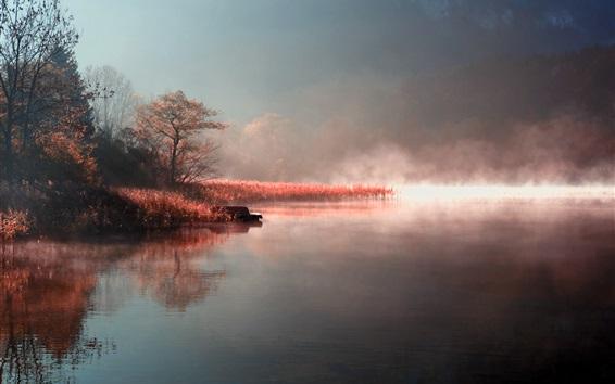 Wallpaper Autumn, morning, lake, fog, grass, trees, boat
