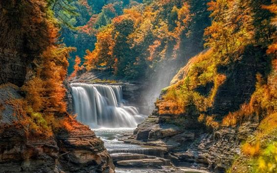 Papéis de Parede Outono, árvores, cachoeira, pedras