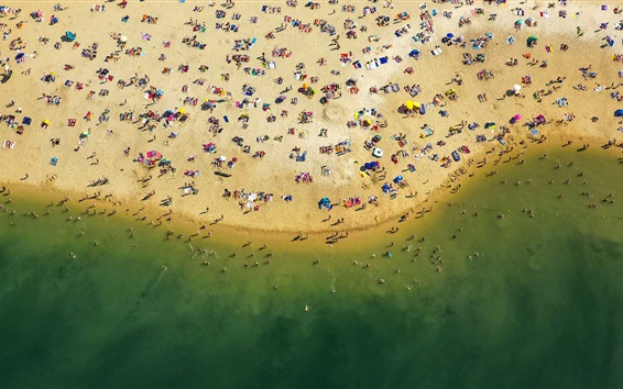 Wallpaper Beach top view, sea, coast, sands, people