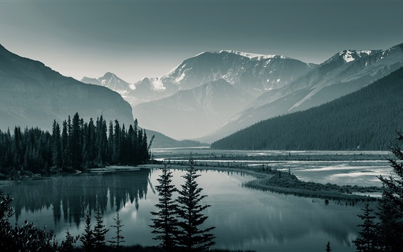 Wallpaper Canada Banff National Park, Albert, trees, mountains, lake, dawn