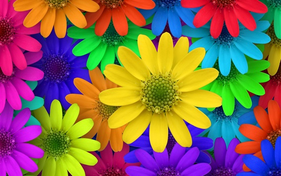 Wallpaper Colorful flowers, garden, creative pictures