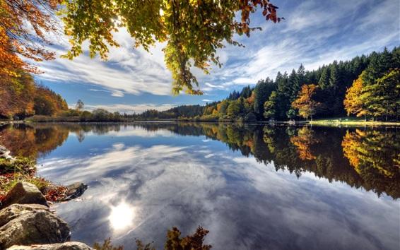 Обои Дайнингер Weiher, Германия, озеро, вода отражение, деревья, осень