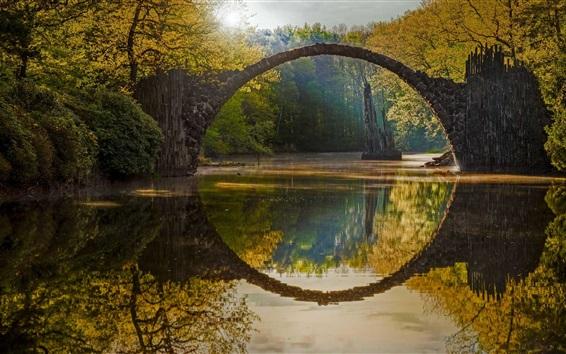 壁紙 庭、木々、池、秋、石のアーチ、太陽の光線