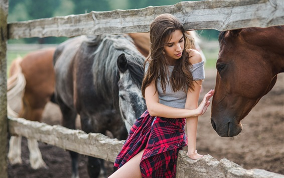 Обои Девушка касание руки лошадь