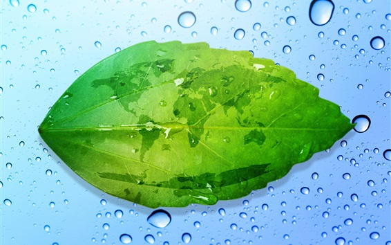 Wallpaper Green leaf, world map, water droplets, creative pictures