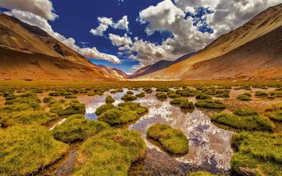 Fond d'écran Ladakh, Jammu et Cachemire, montagnes, marais, herbe, Inde
