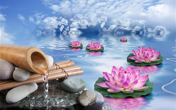 Wallpaper Lotus, stones, water, pink flowers, clouds, creative design