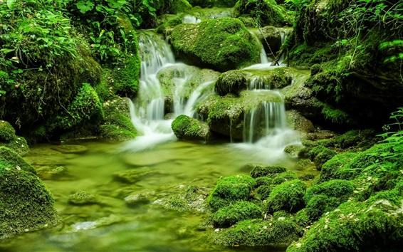 Обои Природа пейзажи, мох, камни, ручей, зелень, Италия