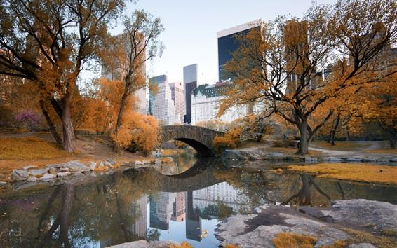 배경 화면 뉴욕, 센트럴 파크, 가을, 나무, 물, 고층 빌딩