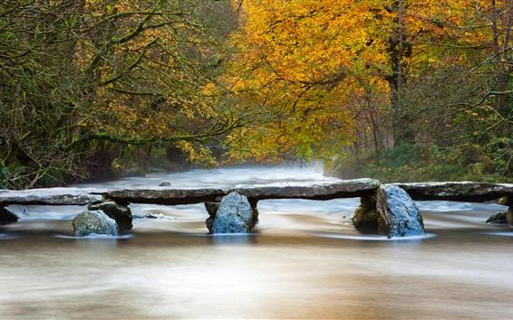 Fond d'écran Rivière, arbres, pierre, pont, automne