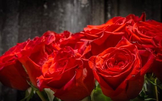 Wallpaper Rose flowers close-up, bouquet