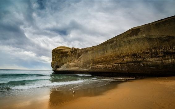 Wallpaper Sea, beach, rock, bird, clouds