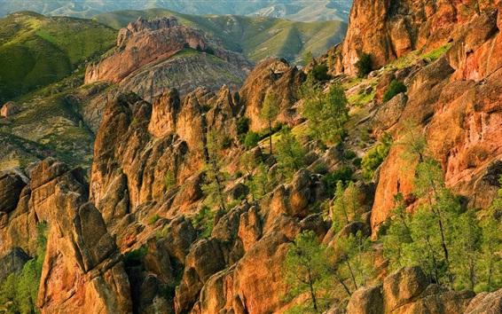 Fond d'écran Montagne en pierre, arbres, nature