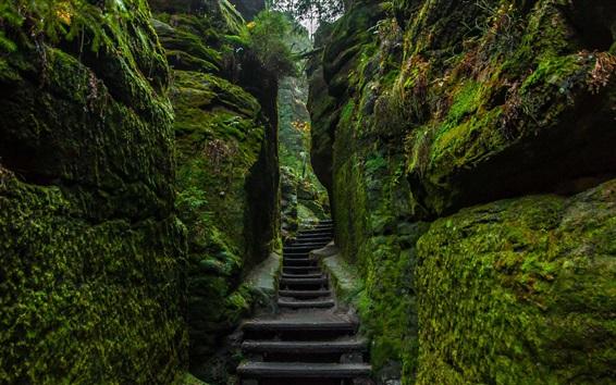 Papéis de Parede Pedras, passeio, montanhas