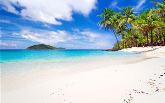 壁紙 タイ、海岸、海、島、ビーチ、ヤシの木