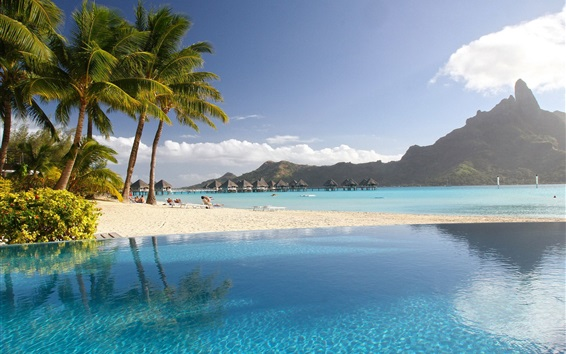 Wallpaper Tropical, resort, palm trees, pool, sea