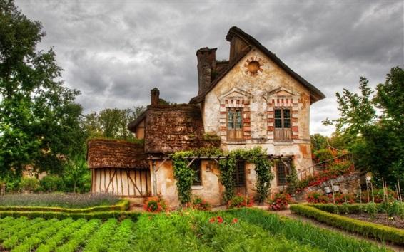 Wallpaper Village, house, fields, flowers, trees, clouds