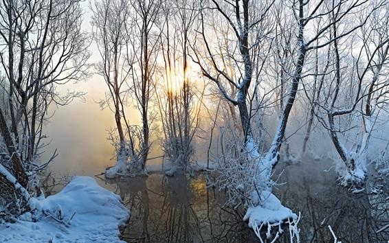 Wallpaper Winter morning, fog, sunrise, trees, water, thick snow