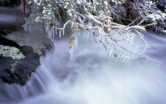 Обои Зима, веточки, лед, холод, река