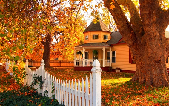 Wallpaper Wooden house in autumn, trees, leaves