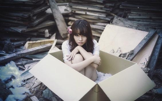 Papéis de Parede Asiático, menina, caixa
