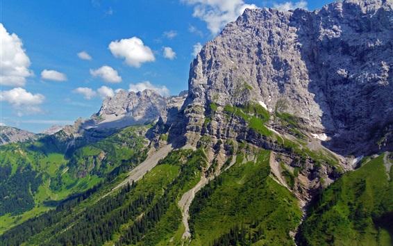 Papéis de Parede Austríaco, Alpes, montanha, árvores, penhasco, Nuvens