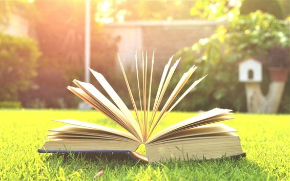Wallpaper Book, grass, sunshine