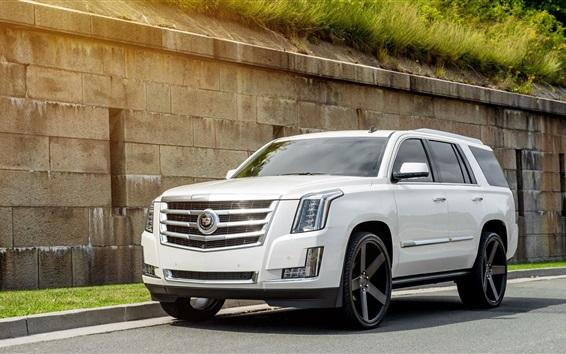 Обои белый автомобиль вид спереди Cadillac Escalade