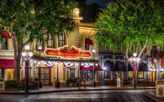 Fond d'écran Disneyland, ville, rue, arbres, nuit, lumières, USA