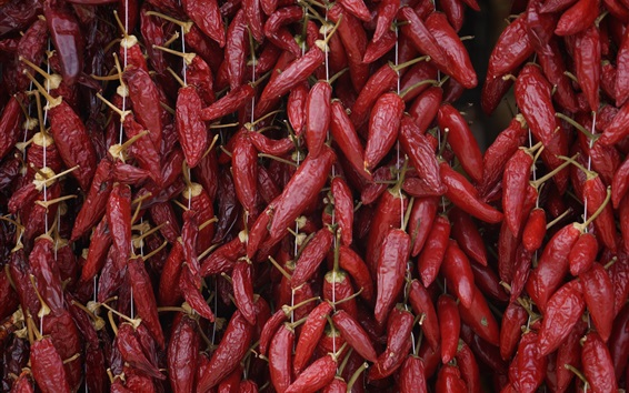 Wallpaper Dried red peppers, vegetables close-up