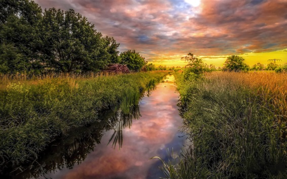 Wallpaper Germany nature scenery, grass, trees, field, river, clouds, sunset