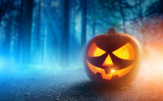 Wallpaper Halloween, pumpkin lantern, face, night, trees