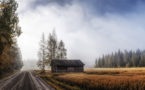 Wallpaper House, road, field, trees, fog, morning, autumn