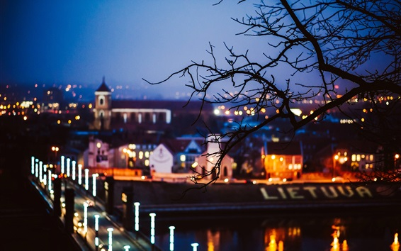 Wallpaper Lithuania, Kaunas, city night, lights, trees, blur style