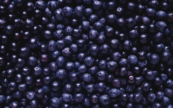 Wallpaper Many blueberries