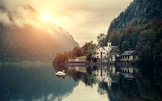 Wallpaper Mountains, lake, swans, houses, trees, sunrise, clouds, dawn