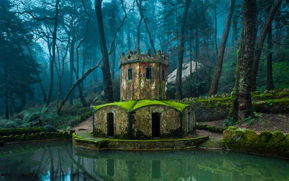 Wallpaper Portugal, Sintra, park, trees, mini castle, moss, stones, pond