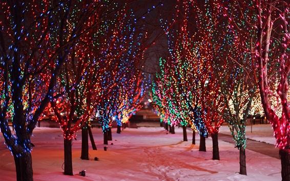 Wallpaper Trees, night, snow, winter, beautiful holiday lights