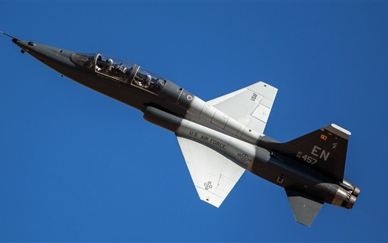 Wallpaper US Air Force T-38 fighter