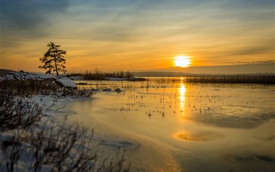 Wallpaper Winter, lake, snow, sunset, grass