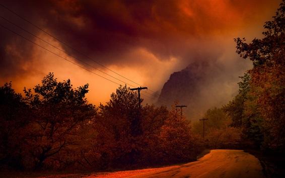 Wallpaper Autumn, trees, road, fog, night