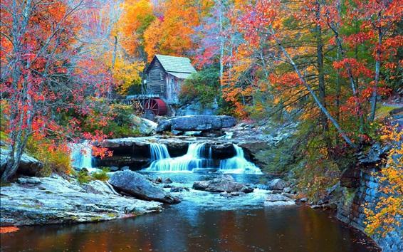 Fond d'écran Babcock State Park, USA, cascade, ruisseau, arbres, maison, automne