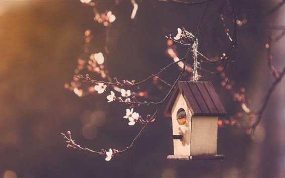 Papéis de Parede Casa do pássaro, flores da cereja