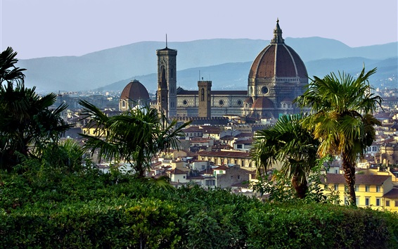 Wallpaper Florence, Tuscany, Italy, houses, palm trees