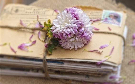 Papéis de Parede Flores e letras