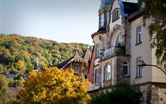 Wallpaper Germany, Heidelberg, buildings, trees, autumn