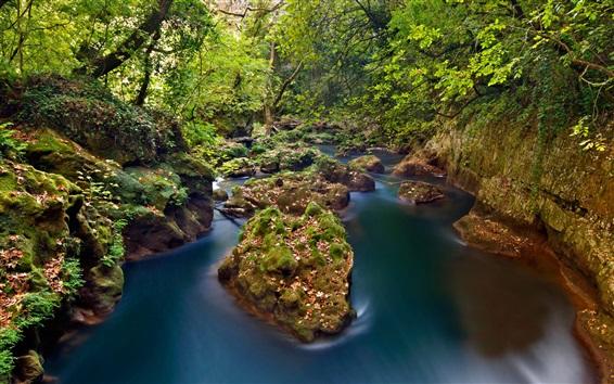 Wallpaper Greece, Epirus, Thyamis River, forest, stones, autumn