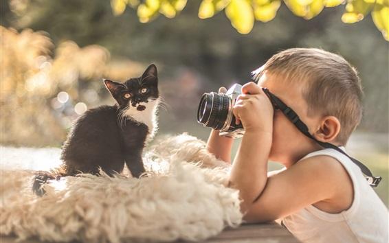 Wallpaper Little boy, photo shoot, kitty, camera