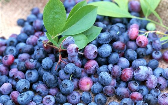 Wallpaper Many ripe blueberries