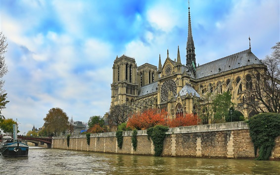 Wallpaper Notre Dame Cathedral, river, blue sky, trees, France, Paris